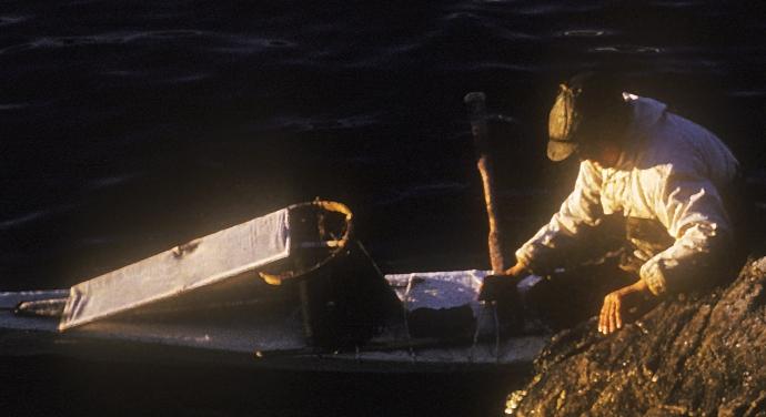 Greenland 1959: Ummannaq, man entering his kayak.